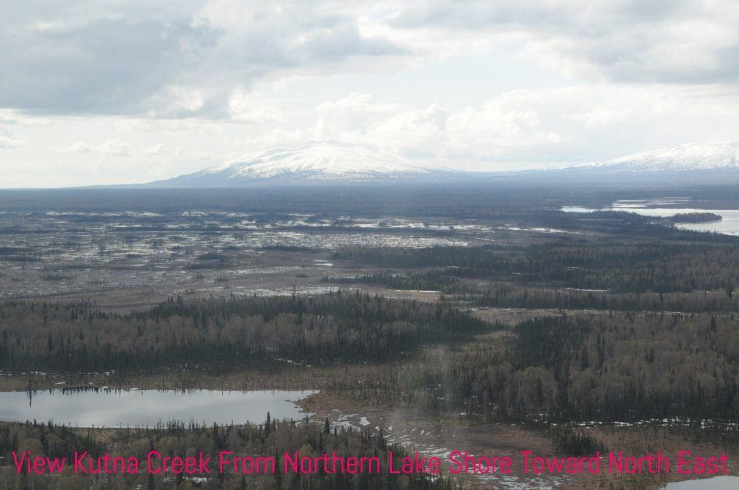 Alaska's Southcentral Region 5 AC For Sale Stunning Fly-IN