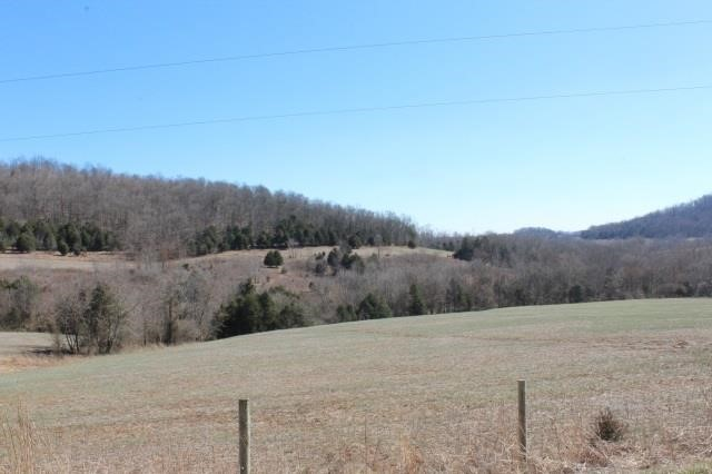 162 ACRES - GREAT HUNTING PROPERTY - 4 TRACTS