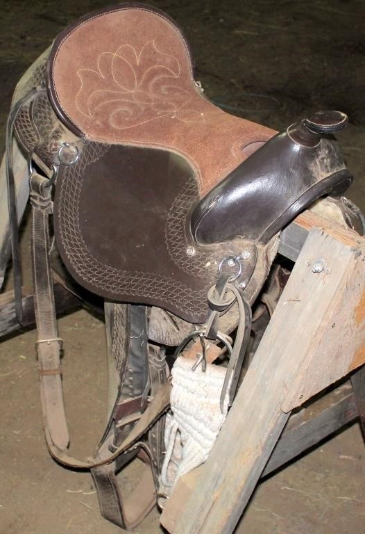 Western Saddle #1 (view 1)