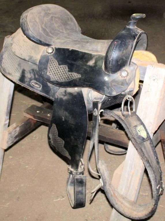 Western Saddle #2 (view 1)