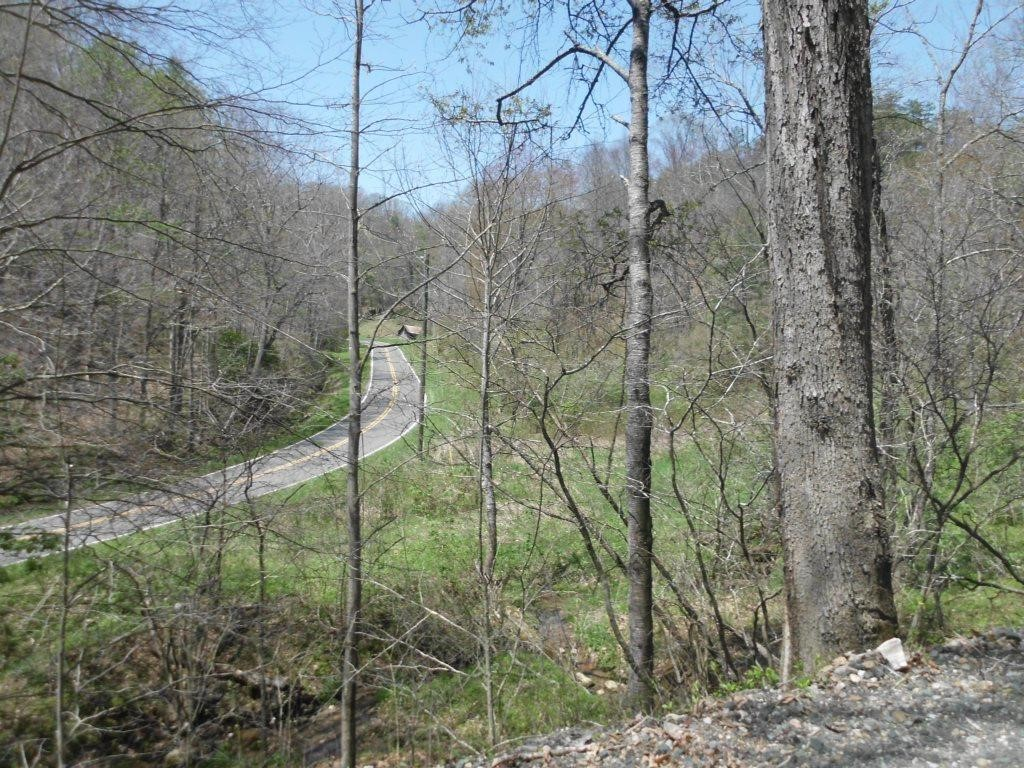 Ashe Co. Mountain Land Auction
