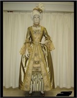 South Florida Premier Costume Shop Absolute Auction