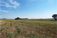 8/26 Whitehead 80 ACRES * GRASSLAND * GRANT COUNTY * MEDFO