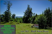 Majestic Mountain Lot, Lake Property and More!